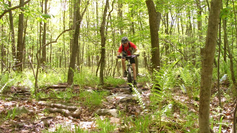 Great riding this spring...-269_800x450.jpg