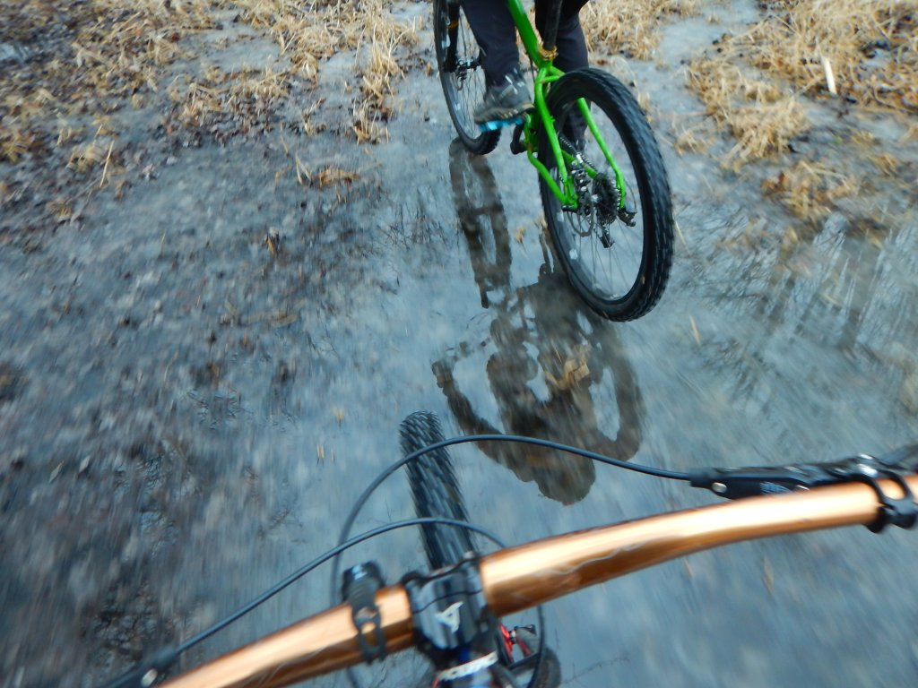 did you ride today?-26f5eti.jpg