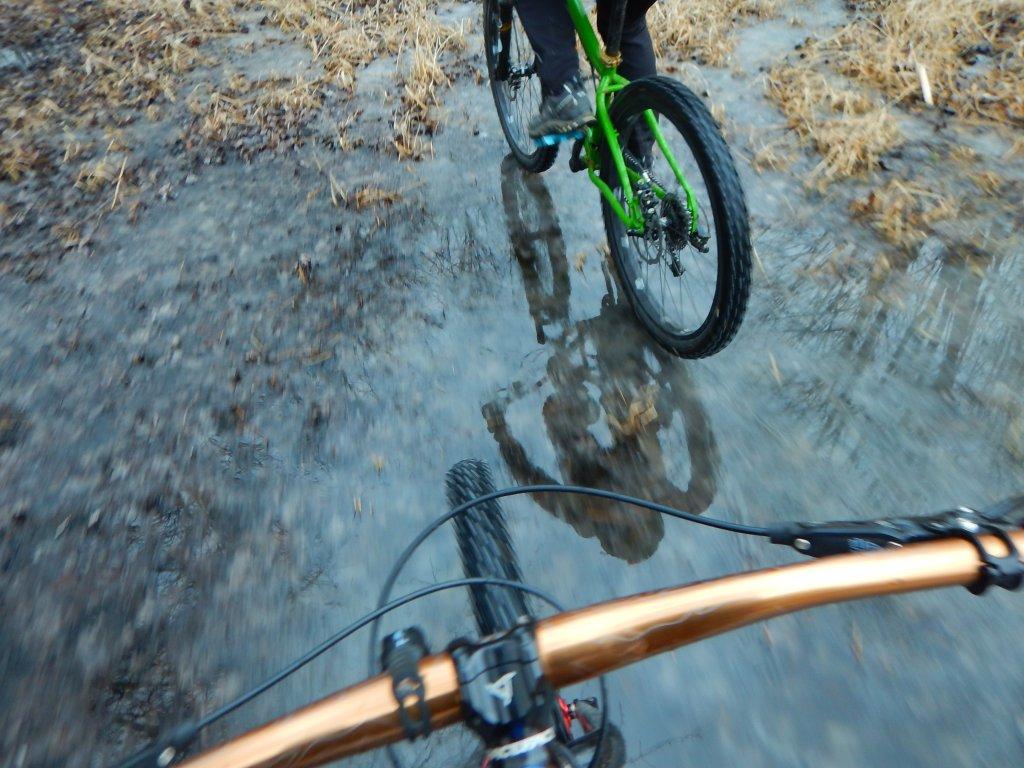 Local Trail Rides-26f5eti.jpg