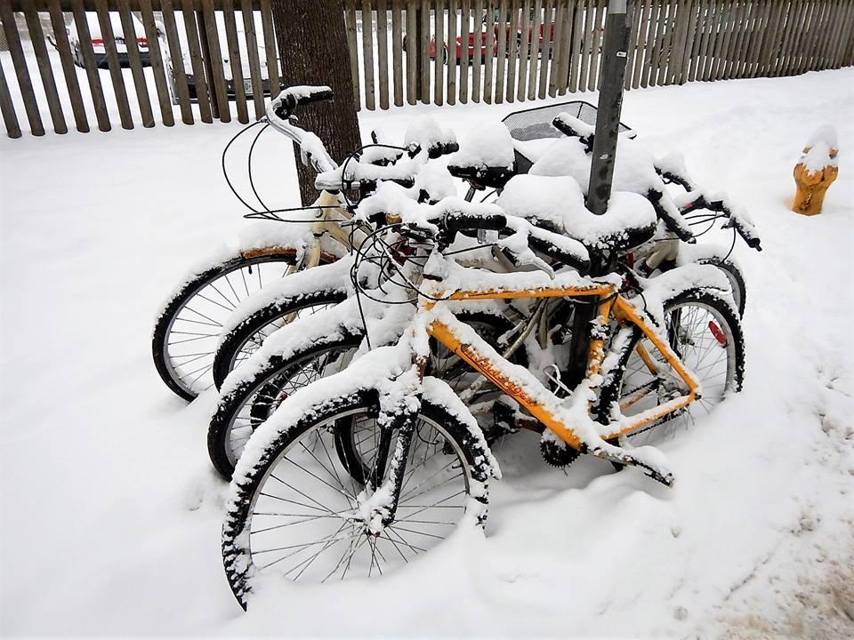 Sad Bikes-27867669_2060252524219188_2992952973773013371_n.jpg