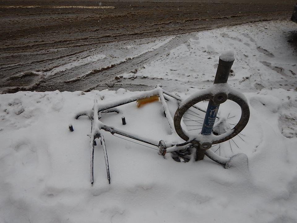 Sad Bikes-27971949_2060233494221091_8958345458786894647_n.jpg
