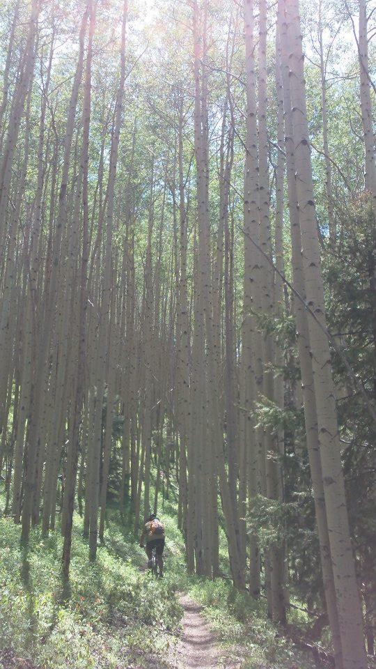 The NM Trail Pix Thread-283677_10151004028184185_72190489_n.jpg