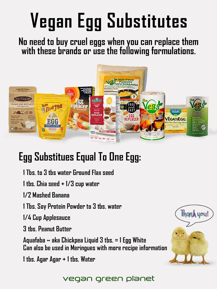 Vegetarian / Vegan / Raw recipes & chat-28577807_1579692025445599_6645226529116651520_n.jpg