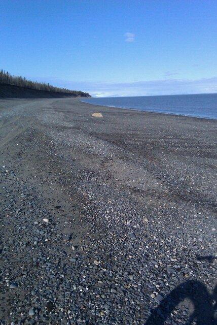 Beach/Sand riding picture thread.-29143_1354501674145_1579552385_30829528_7279358_n.jpg
