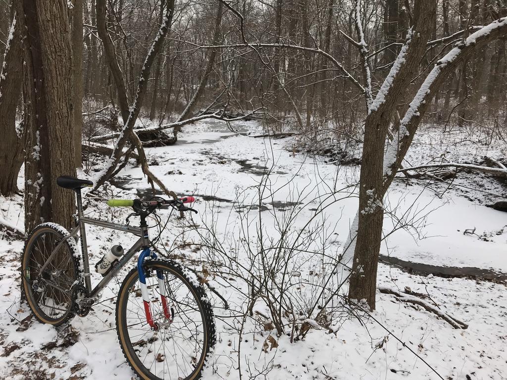 Trail Pics-2950af4e-6917-4f7a-a744-b05195b8130e.jpg