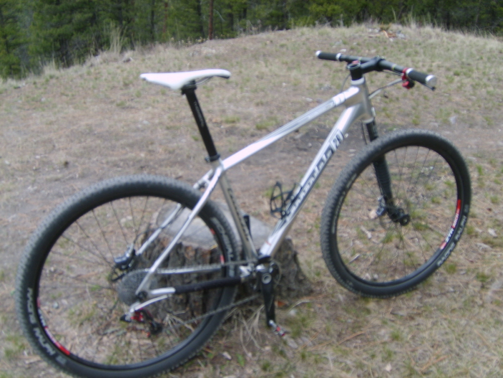 Can We Start a New Post Pictures of your 29er Thread?-29er-1x92.jpg