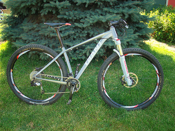 Who's riding an X-fusion fork or Manitou fork on their 29'r?-29er-small.jpg