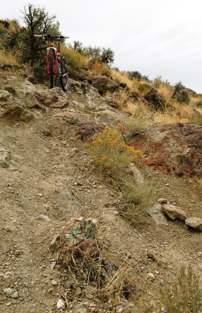 29ers In The Fall-29ers-fall-2.jpg