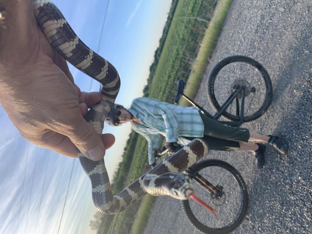 Photo Assignment: snakes on the trail-2e453b7b-55e1-4f8b-843c-2cfa8e6f0723.jpg