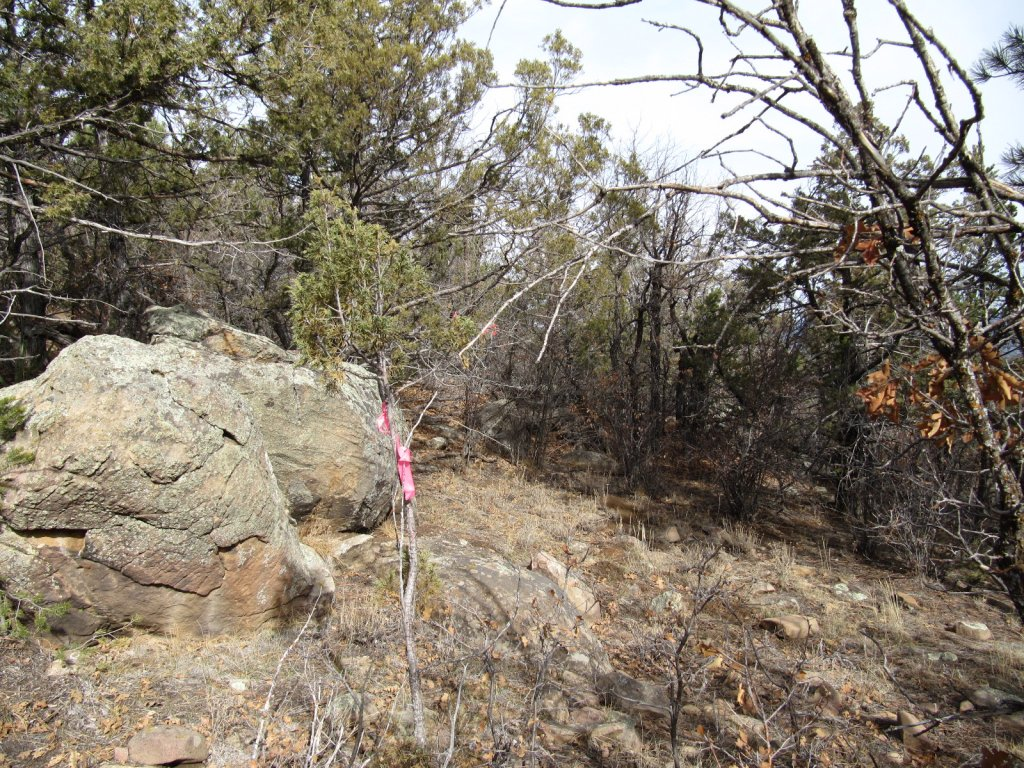 Three Bottle Technical trail  extension and work on existing trail feedback.-3-bs-scouting-lines-008.jpg