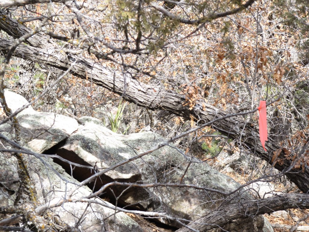 Three Bottle Technical trail  extension and work on existing trail feedback.-3-bs-scouting-lines-009.jpg