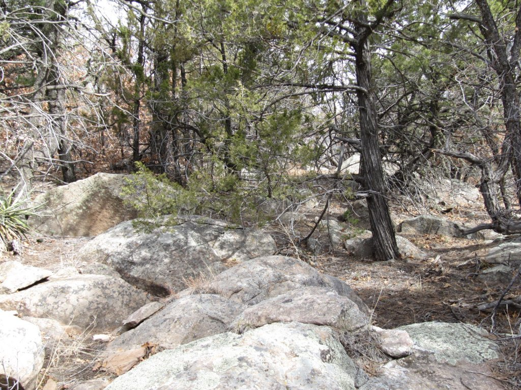 Three Bottle Technical trail  extension and work on existing trail feedback.-3-bs-scouting-lines-012.jpg