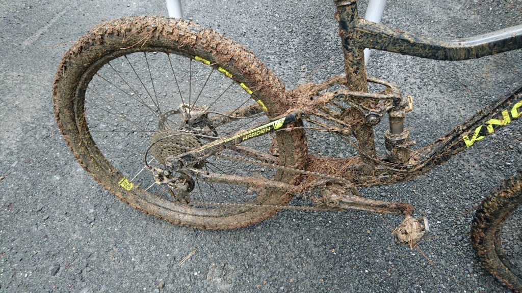 Post Ride Body Cleanup Poll-3.jpg