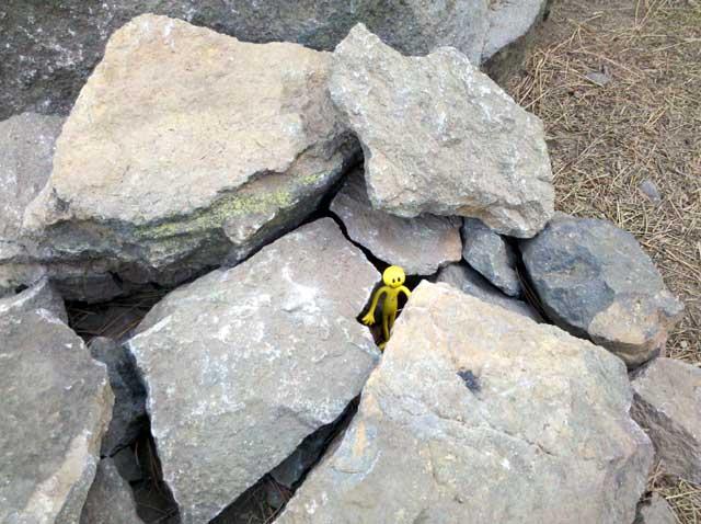 Yellowman game-3.jpg