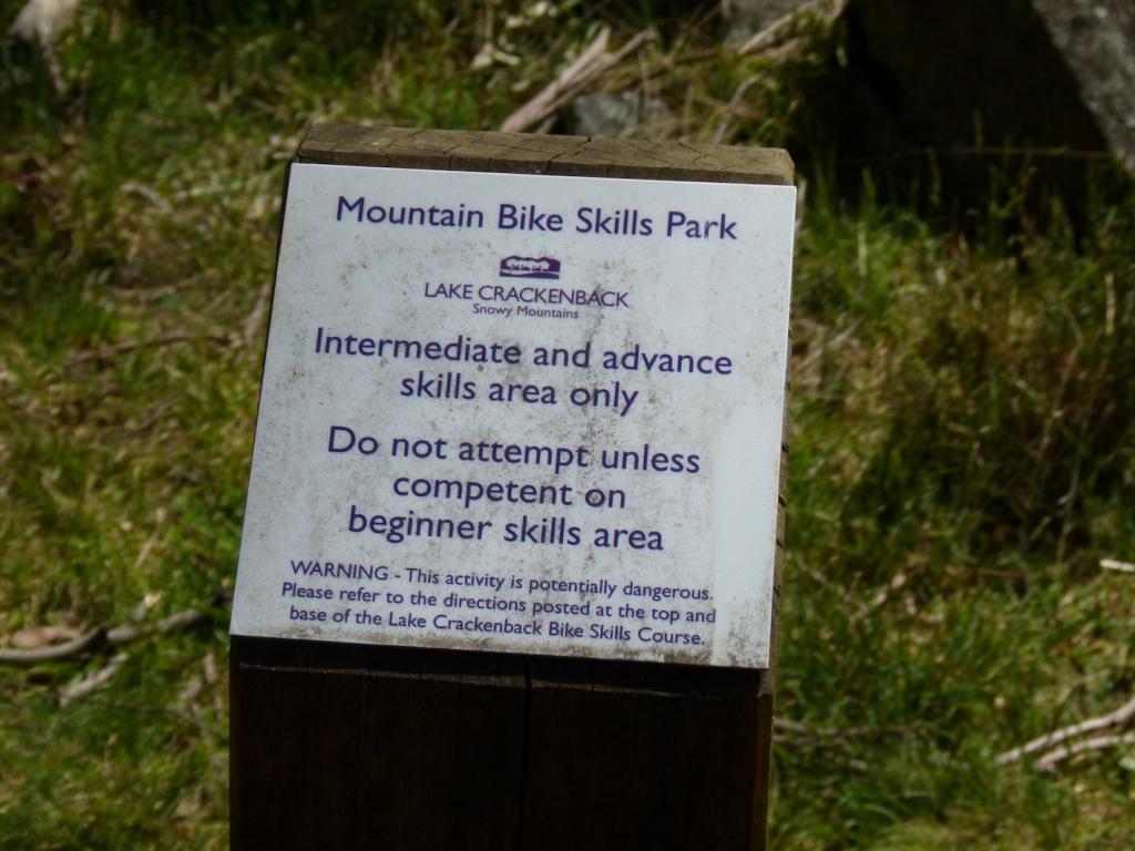 Skills Park Build: Best approach?-3.jpg