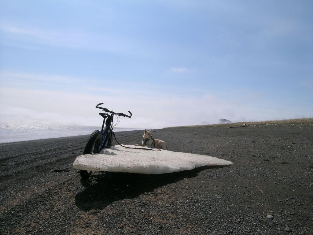 Beach/Sand riding picture thread.-3.-last-beach-ice.jpg
