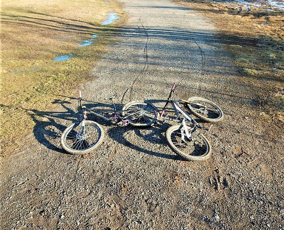 Local Trail Rides-31108352_2096277673950006_6958426329003851776_n.jpg