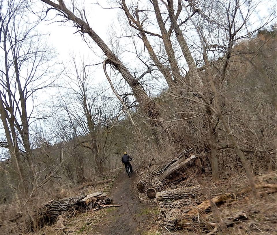 Local Trail Rides-31444755_2099835290260911_6055068834048507904_n.jpg