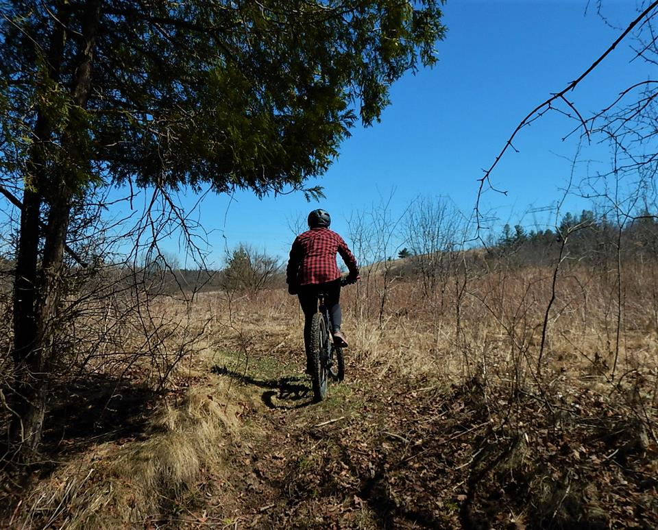 Local Trail Rides-31494054_2100306496880457_5406009742734655488_n.jpg