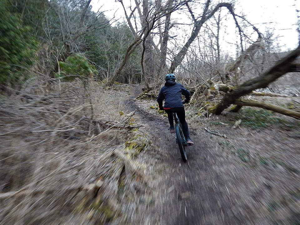 Local Trail Rides-31531011_2099835843594189_1685477550727364608_n.jpg