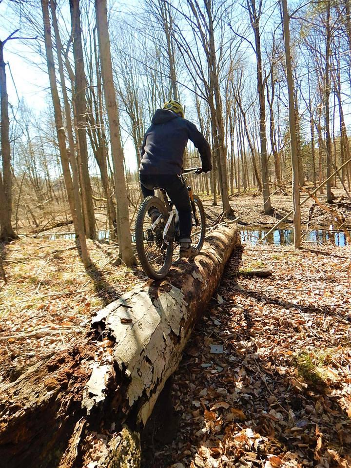 Local Trail Rides-31563968_2100301270214313_4226744356138123264_n.jpg