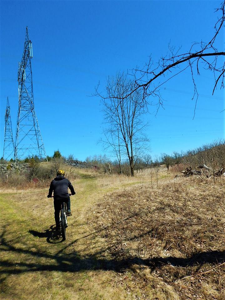 Local Trail Rides-31578016_2100304833547290_7016794170052313088_n.jpg