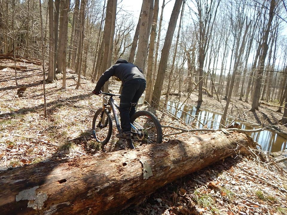 Local Trail Rides-31682260_2100300840214356_3649833714600378368_n.jpg