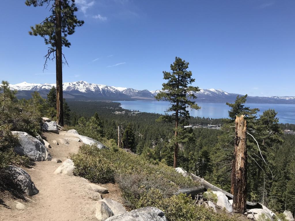 Tahoe Trails and Shuttles Status-31817372_2045656258840567_159419281832935424_o-1-.jpg