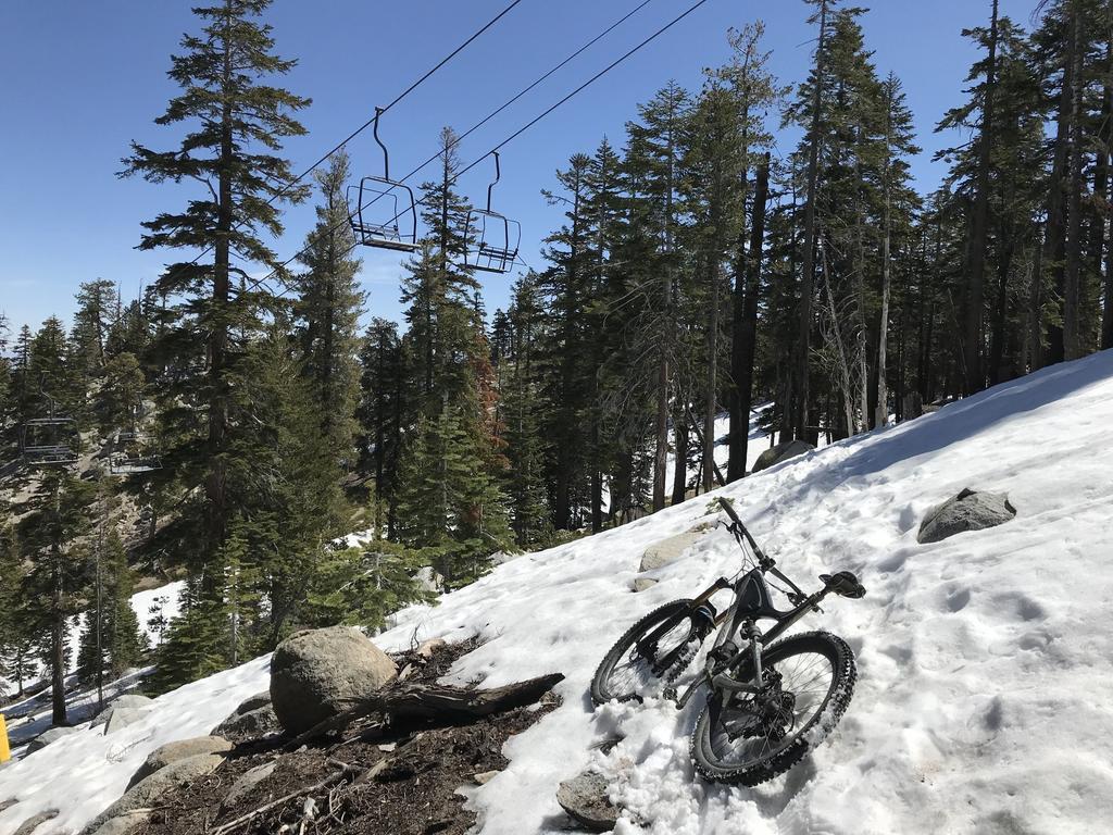 Tahoe Trails and Shuttles Status-31946923_2045656215507238_3143084705327349760_o-1-.jpg