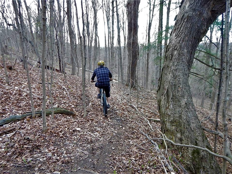 Local Trail Rides-31949404_2103639203213853_8806128286309548032_n.jpg