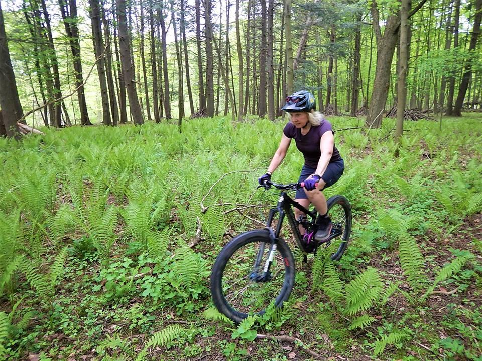 Local Trail Rides-32907042_2111634645747642_7807936298550820864_n.jpg
