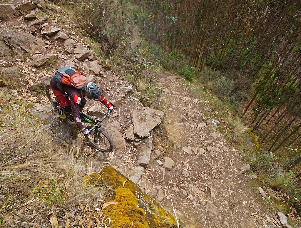 Biking in Peru-32lamaylap1-dsc06412.jpg