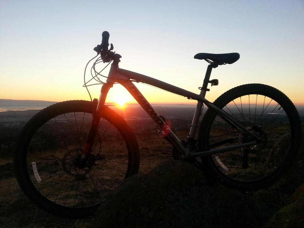 What did You do today on your mountain bike?-330101_429457143773256_2050122628_o.jpg