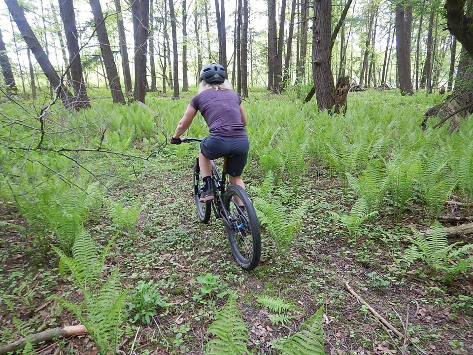 Local Trail Rides-33138467_2111634902414283_7309314935064887296_n.jpg