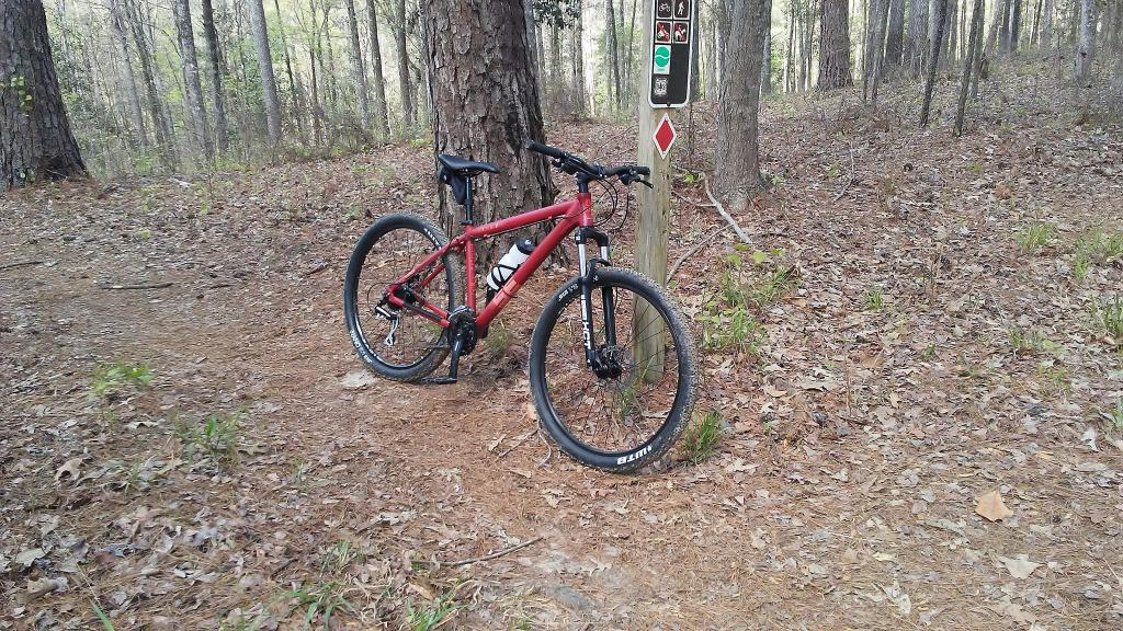Post Pictures of your 27.5/ 650B Bike-33571107755_643835b940_k.jpg