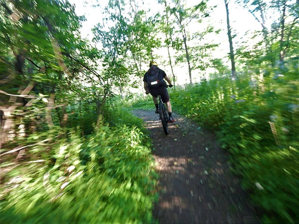 Local Trail Rides-34303520_2118119815099125_9027092611248160768_n.jpg