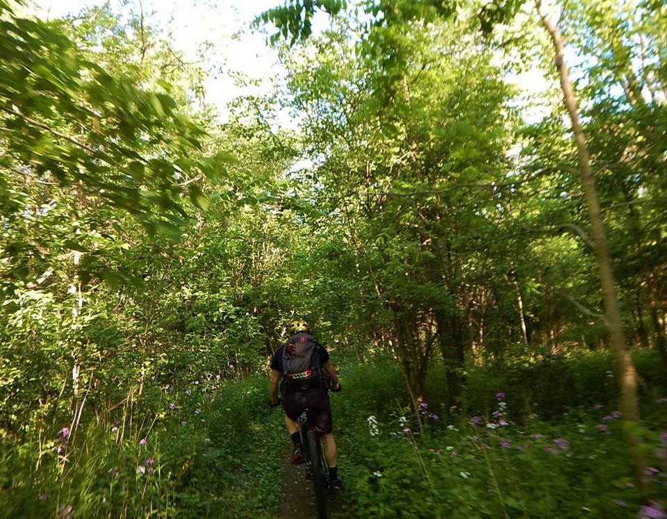 Local Trail Rides-34303555_2118119491765824_3153544187643691008_n.jpg