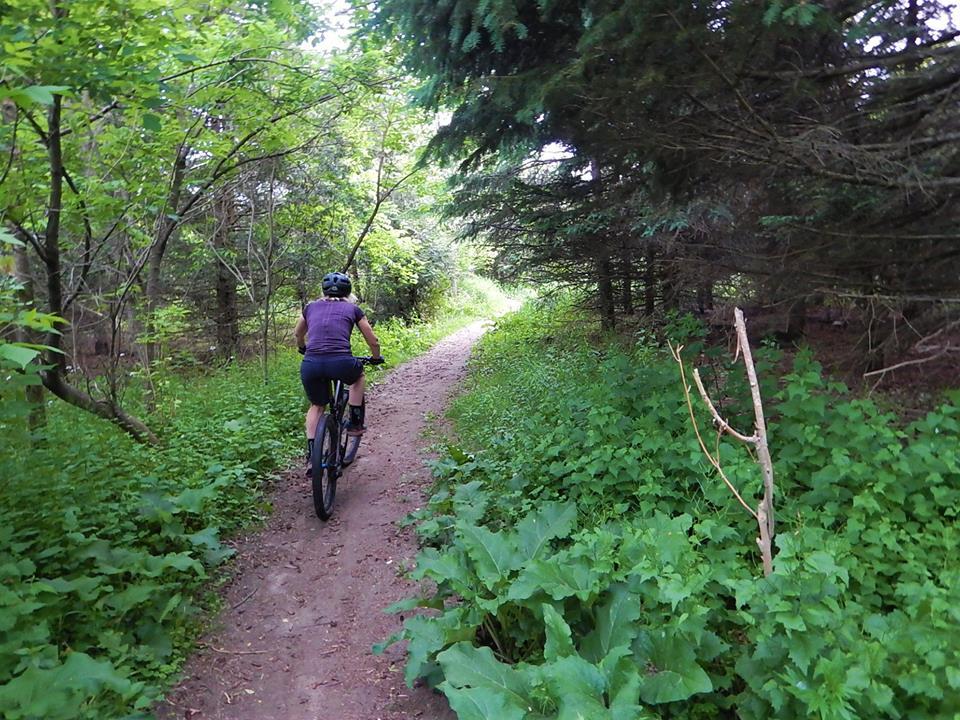 Local Trail Rides-34842527_2122087564702350_2112170109064708096_n.jpg