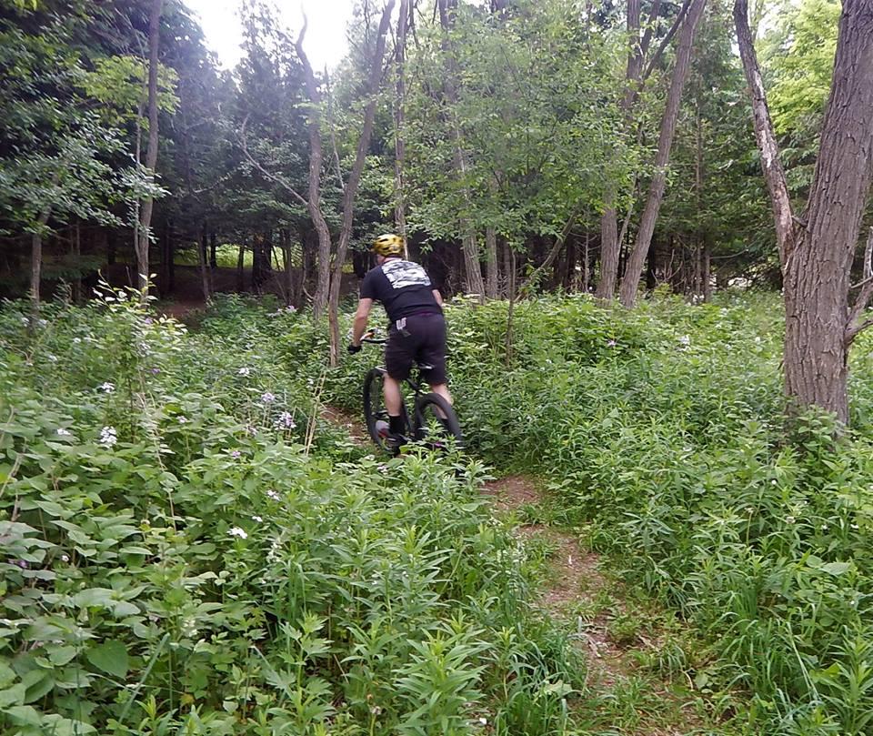Local Trail Rides-34872687_2122085914702515_3213713342271062016_n.jpg