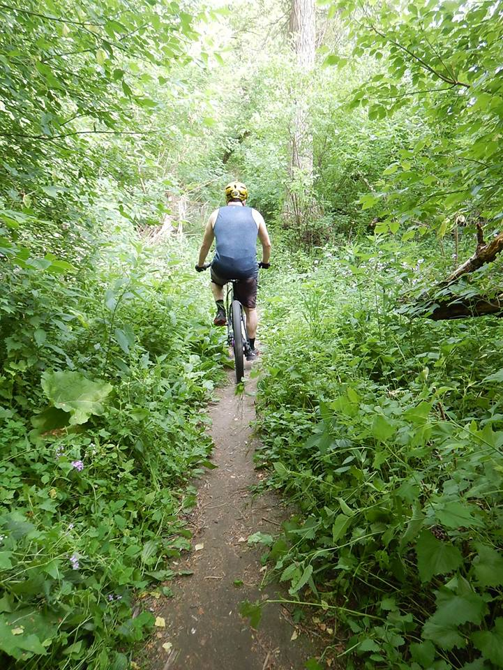 Local Trail Rides-35364057_2127717330806040_3127766798955446272_n.jpg