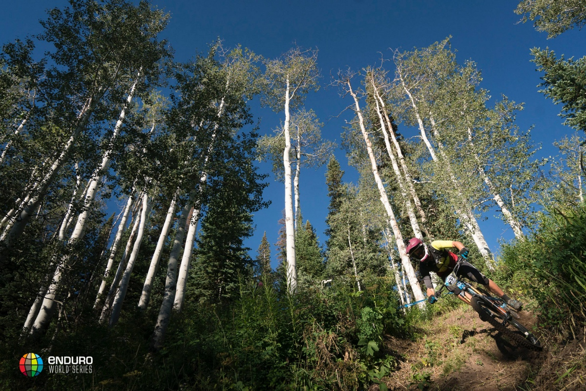 EWS No. 6: Aspen-Snowmass