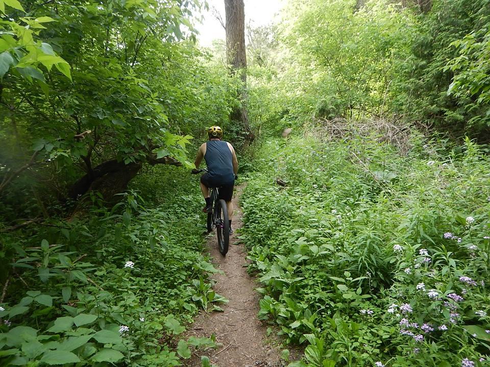 Local Trail Rides-35399171_2127711960806577_1501173318575718400_n.jpg