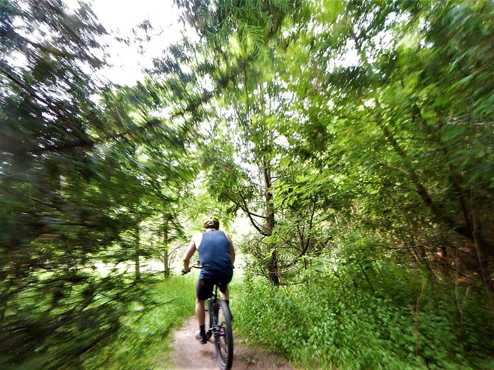 Local Trail Rides-35519855_2127708707473569_1659816882070355968_n.jpg