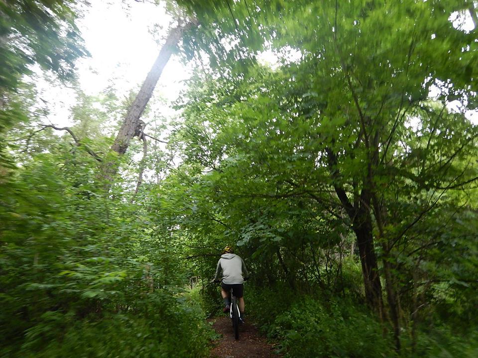 Local Trail Rides-36002885_2135389796705460_3278487333199937536_n.jpg