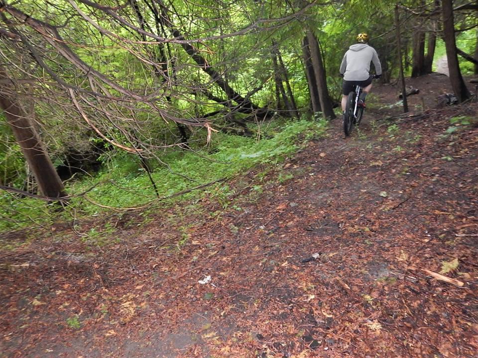 Local Trail Rides-36121208_2135388283372278_8431167771533901824_n.jpg