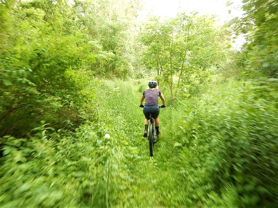 Local Trail Rides-36429486_2142503502660756_3891858660783030272_n.jpg