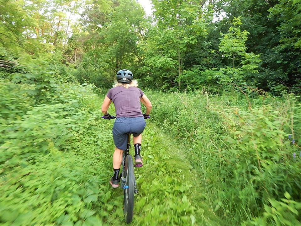 Local Trail Rides-36431855_2142502202660886_7000791972310941696_n.jpg