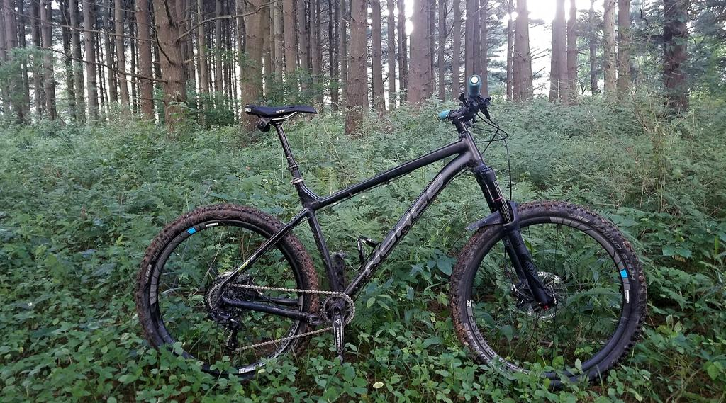 First plus bike coming soon...Norco Torrent 7.1 build-36684024_10156447641824291_1263009011121258496_o.jpg