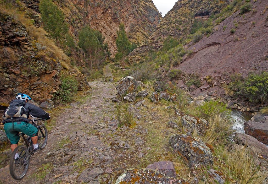 Biking in Peru-36lowerlaresdsc06299.jpg