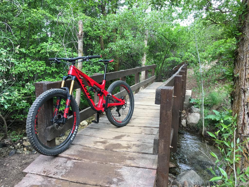 bike +  bridge pics-373e754a-3865-444f-8a8f-60135421d211.jpg